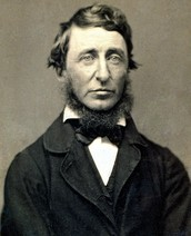 Response to Henry D. Thoreau