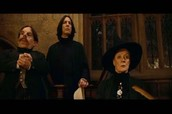 Professor Snape, McGonagall and Flitwick.