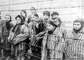 Auschwitz Child Survivors