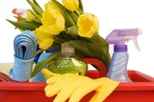 Our Full Deep Clean Service Include's