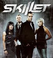 3. Skillet