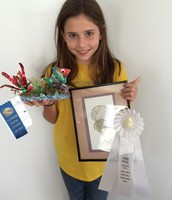 Award Winning Artist