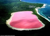Lake Hillier in Australia.