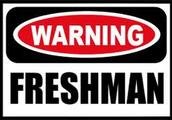 As a Freshman