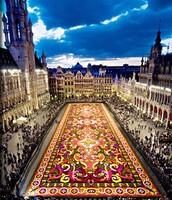 Grand Carpet Festival