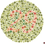 So What Does Color Blindness Look like?