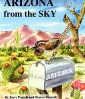 Arizona From The Sky