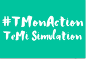 National TeMi TM Simulation 1.0