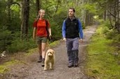 7 Benefits of regular physical activity, according to the Mayo Clinic.