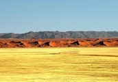 Karoo, a vast semidesert covering more than 100,000 square miles of South Africa's Cape region.