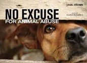 Animal abuse is