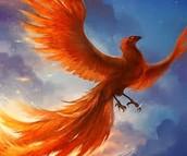 Phoenix Hearts