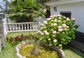 Lloret De Mar Villa Holidays