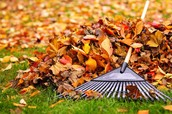 Annual Fall Beautification 9:00-12:00 on the Sept. 26th