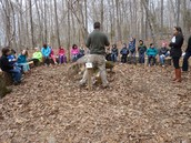 Our new nature trail learning space
