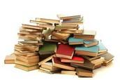 Yo estudie los libros.