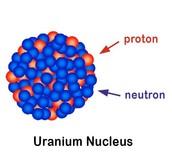 Uranium Nuclei