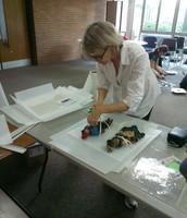 Museum volunteer, Michelle Graham