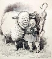 Political Cartoon depicting Taft as Roosevelt's sheep