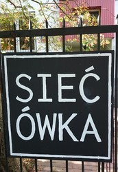 Sieciówka?
