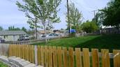 Cute Neighborhood!