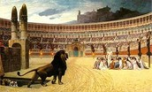 Lion in the arena.