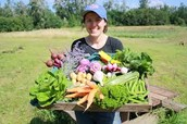 Questions to ask a CSA farmer: