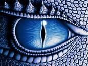 Saphira's Eye