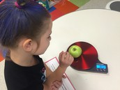 Measuring our apples in ounces