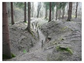 Old Battlefield of Verdun