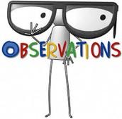 Formal/Informal Observations