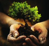 Earth Soil