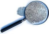 2) Investigation or Arrest/Citation
