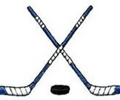 Le sport nationale sont hockey