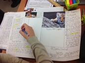 Nonfiction and Text Structure Magazine Project