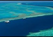 Great Barrier Reef Vacations