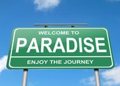 Live In Paradise!
