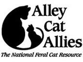 Webinar opprotunity for care of neonatal kittens