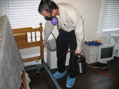 Easy and Effective Methods of Bed Bug Removal Vancouver