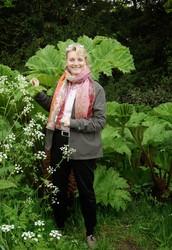 Trädgårdsturisten på sociala medier