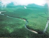 Lake Orinoco
