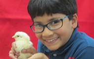 Keanan and his Cute, Little Chick
