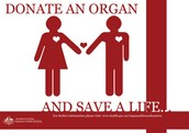 Donate and save a life.