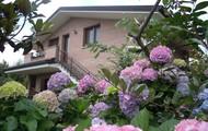 Visit Friuli... in Italy