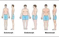 Ectomorph