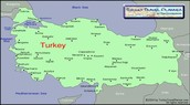 Picture of turkey