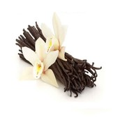 WHAT VANILLA LOOKS LIKE BEFORE IT IS MADE AND PUT IN TO A BOTTLE