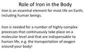 Role of Iron in the Body