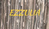 Ezzulia.nl