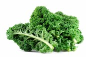 Where Kale Come From